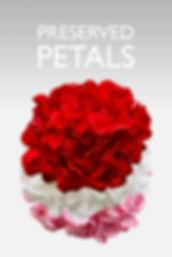 preserved petls.jpg
