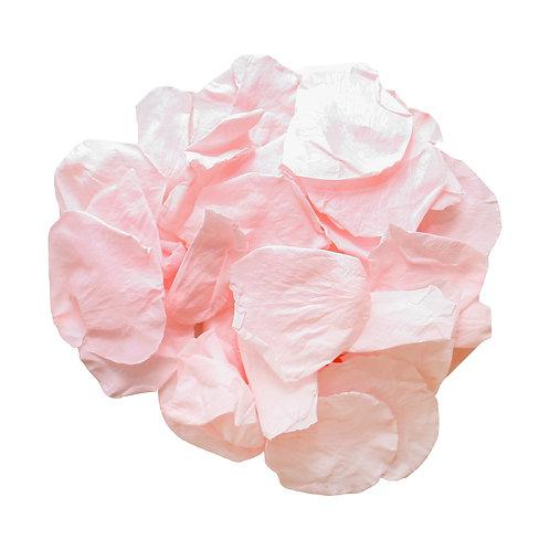 Pink Champagne Rose Petals