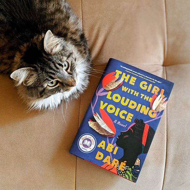 booksterjess the girl with the louding voice book next to a cat