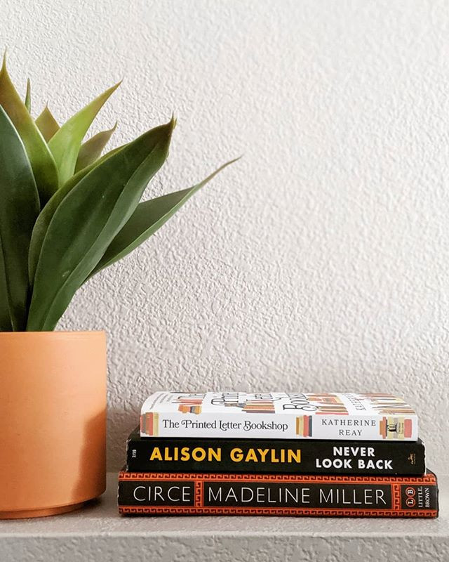 stack of books next to potted plant