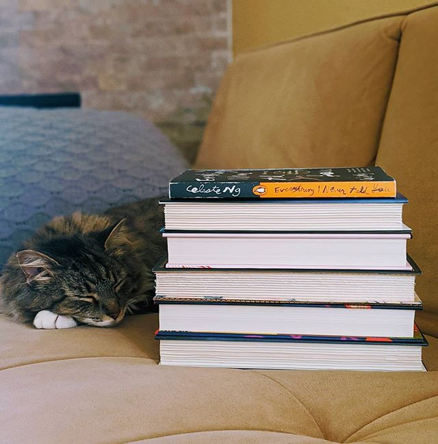 sleeping cat next to a stack of books on a couch