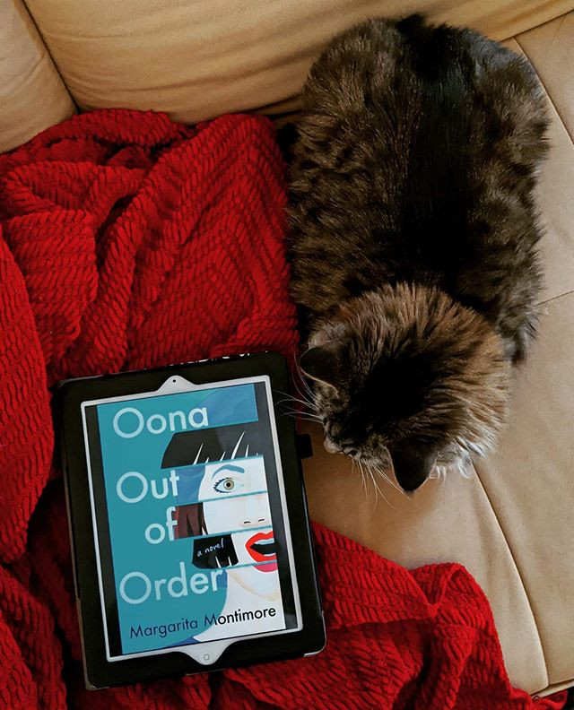 booksterjess cat next to an ebook on a blanket