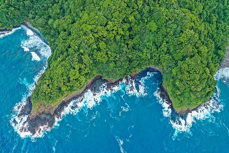 aerial-photography-of-island-3423147 (1)