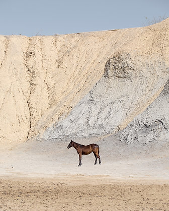 West Texas by Lisa Beggs