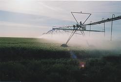 water pivot on a green wheat field