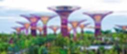 singapour-ecoparc-architecture-jardin-ba