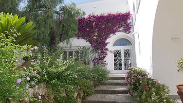 Capri villa floral encased
