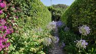 Capri Island Villa Garden