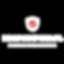 Logo dropshiping.pl.png