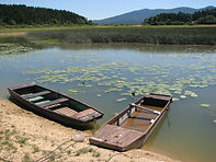Cerknica Lake.JPG