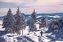 F009852-043_slovenia_winter_2017_velika_