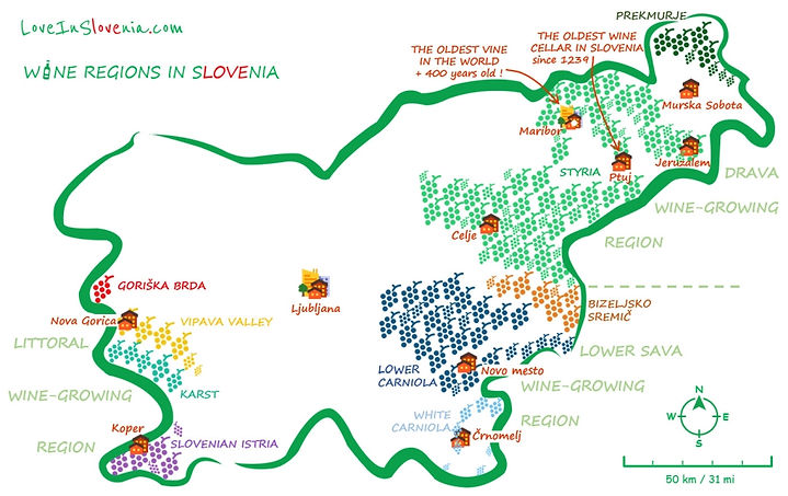 Wine regions in SLOVENIA.jpg
