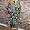 Thumbnail: Skull Saint Swing Dress