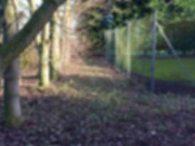 free running field