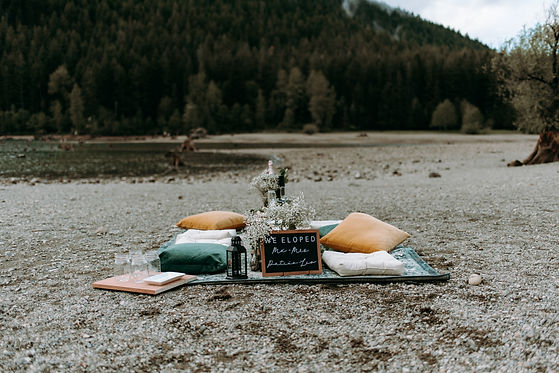 An elopement picnic photographed my Selena. Featuring misc. pillows and florals.