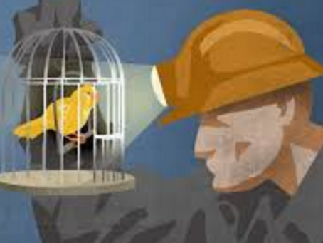 The Canary in the Coal Mine: Backlog and the Early Warning System