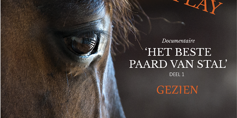 REPLAY 'Het Beste Paard van Stal' Deel 1 - Gezien