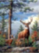 916 - Deer (2).png