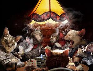 Poker Cats 3064.jpg