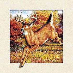 5D Deer 3D lenticular poster wall art de