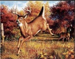 3D Flip Changing Deer 3D lenticular post