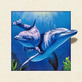 5D Dolphin 3D lenticular poster wall art