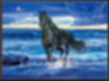3D Flip Horse on Beach 3D lenticular pos
