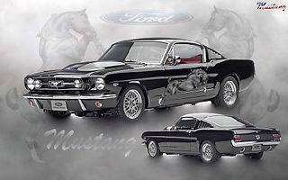Copy of 971 - Mustang.jpg