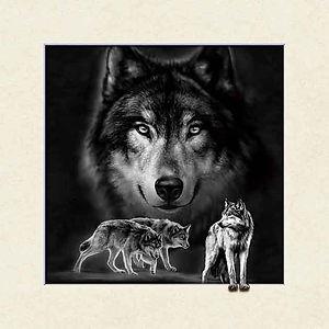 5D Wolf 3D lenticular poster wall art de