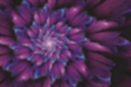 Cyan Flower 20x24 3D Lenticular Poster w