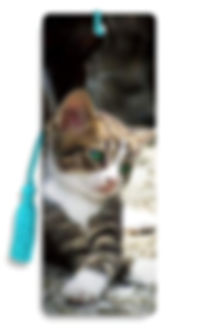 Kitten Flip 3D Bookmark.jpg