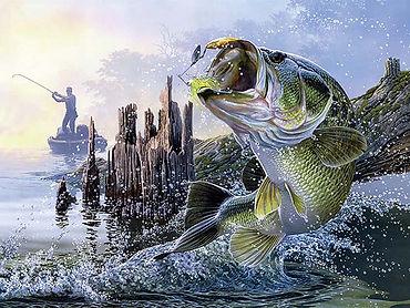 Bass 3D lenticular poster wall art decor