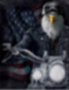 Eagle Bike 3D lenticular poster wall art