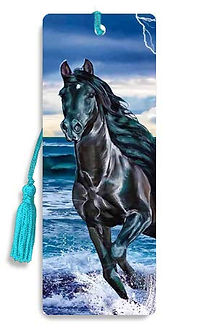 Black Stallion 3D Bookmark.jpg