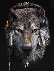 Wolf with Headphones.jpg