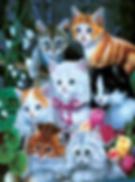 Kittens 3D lenticular poster wall art de