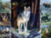 Wolf Collage 3D lenticular poster wall a
