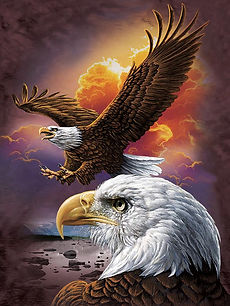 Eagle Sunset 3D lenticular poster wall a