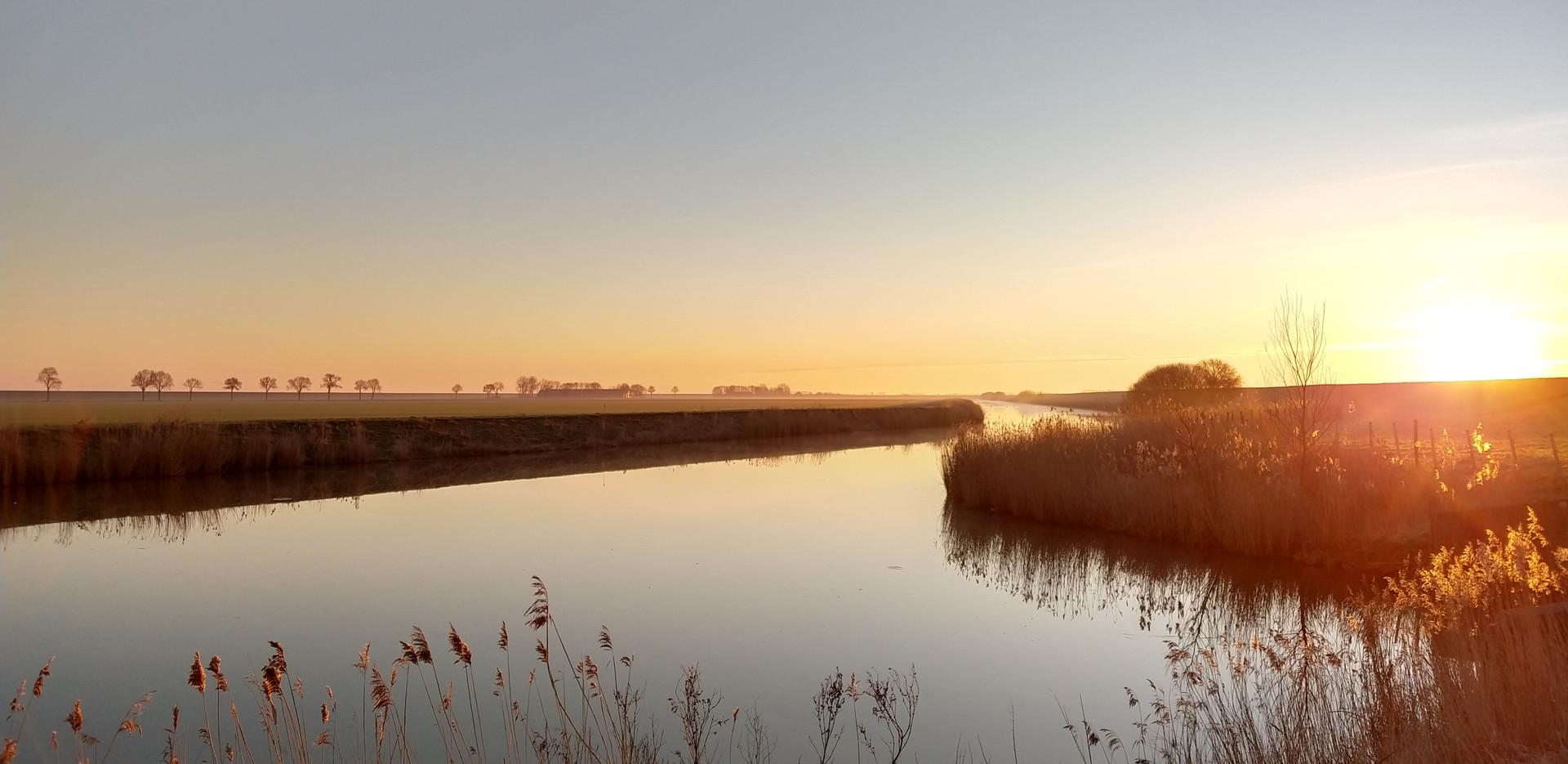 Bloeiplaats-Oldambt