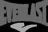 Everlast-logo-2011.svg.png