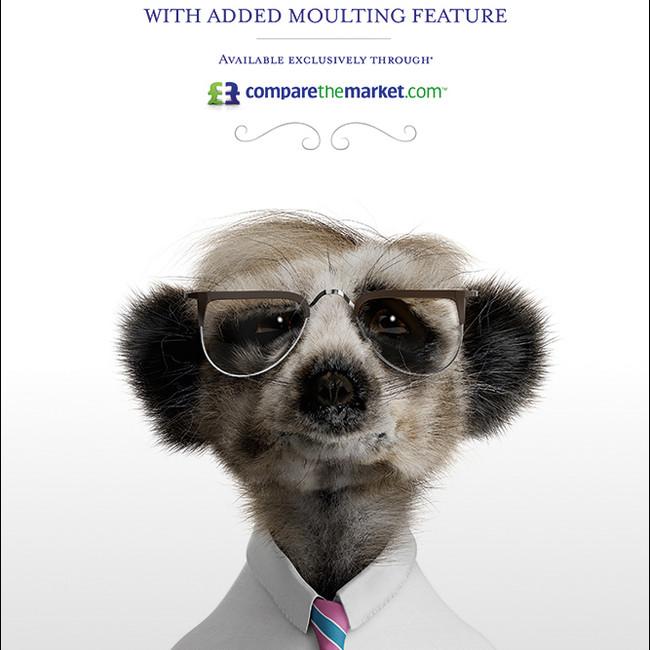 Sergei toy - Press Ad