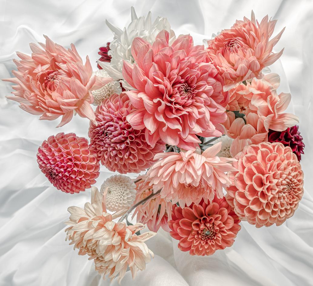 Dahlia Display by Alison Trimbee-1.jpg
