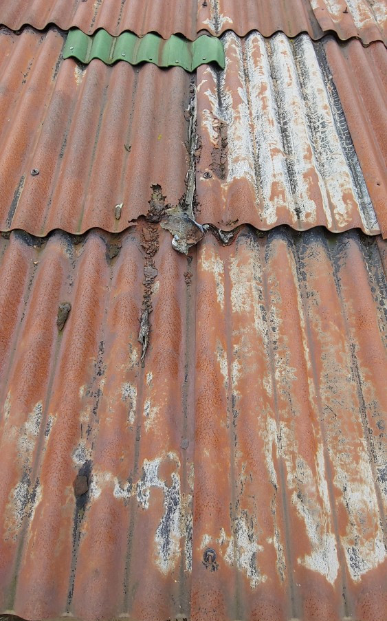 Holey Roof