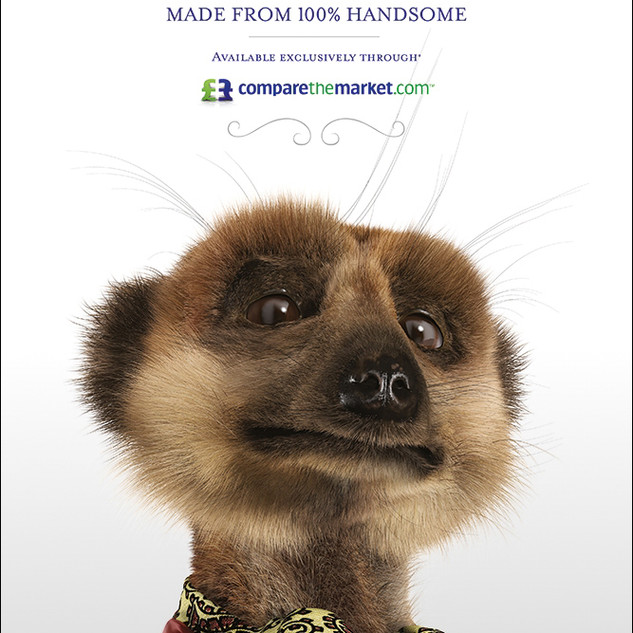 Aleksandr toy - Press Ad