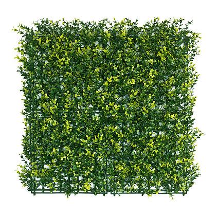 Golden English Box 50x50cm Artificial Hedge Tile