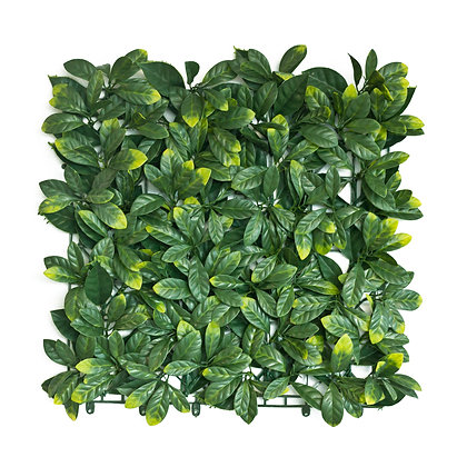Green Photinia Artificial Hedge Tile 50cm x 50cm