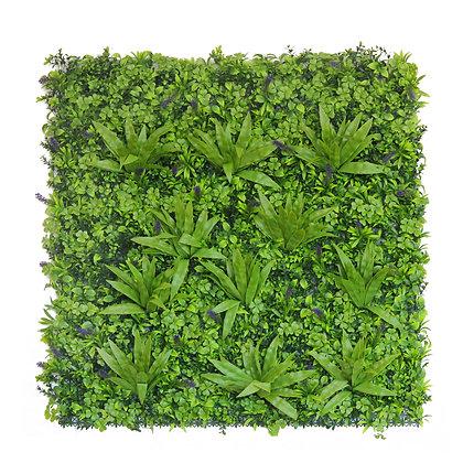 Tropical Lavender 100cm x 100cm Hedge