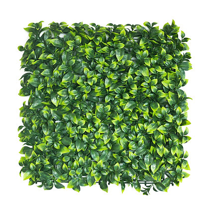 Pittosporum Artificial Hedge Tile 50cm x 50cm