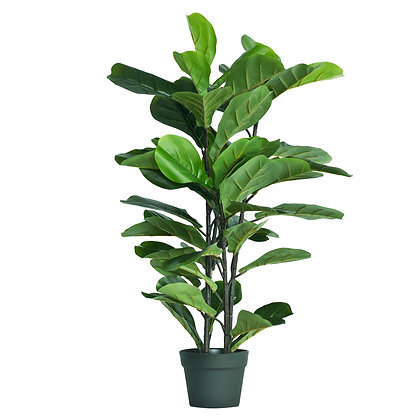 Fiddle Leaf Fig Tree 90cm