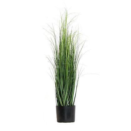 Pond Grass 90cm